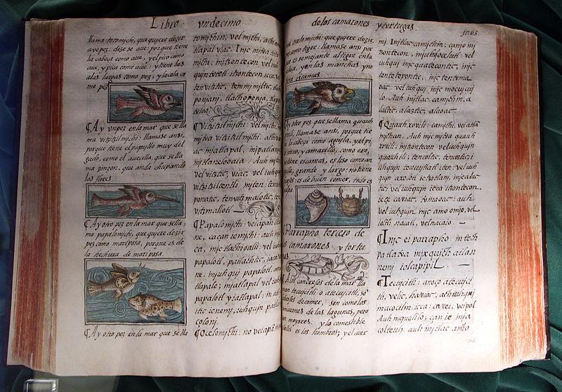 Centro_america,_bernardino_de_Sahagún,_historia_general_de_las_cosas_de_nueva_españa,_1576-77,_cod._m.p._220